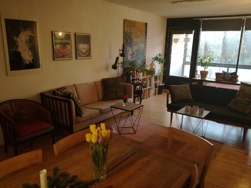 living room - 92 m2 near historic center - Copenhagen - rentals