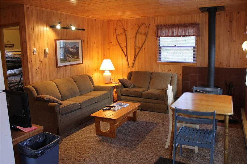 Located at Base of Powderhorn Mtn in the Western Upper Peninsula, A Cozy Home in Quiet Wooded Setting - Image 1 - Bessemer - rentals