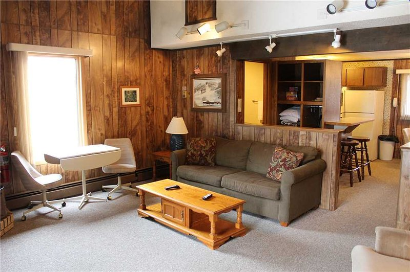 Located at Base of Powderhorn Mtn in the Western Upper Peninsula, A Convenient Trailside Condo with a Shared Hot Tub & Allows Dogs - Image 1 - Bessemer - rentals