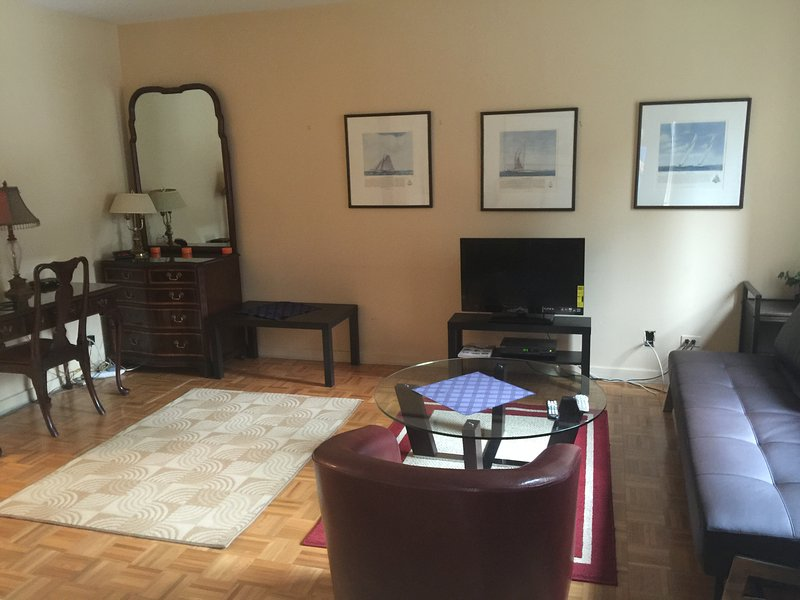 1bdrm/1bath studio in Midtown east. - Image 1 - Manhattan - rentals