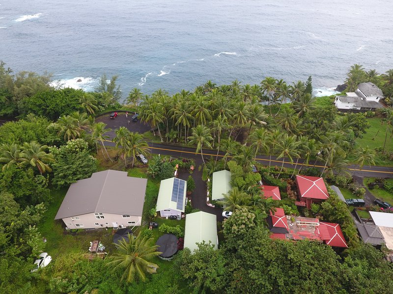 Aerial view of 'Whale House' which is in the center (R) front green roof. (FULL KITCHEN) - The Whale House @ Kehena Beach - OCEANVIEW - Pahoa - rentals
