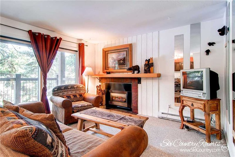 Inner Circle Condos 4 by Ski Country Resorts - Image 1 - Breckenridge - rentals