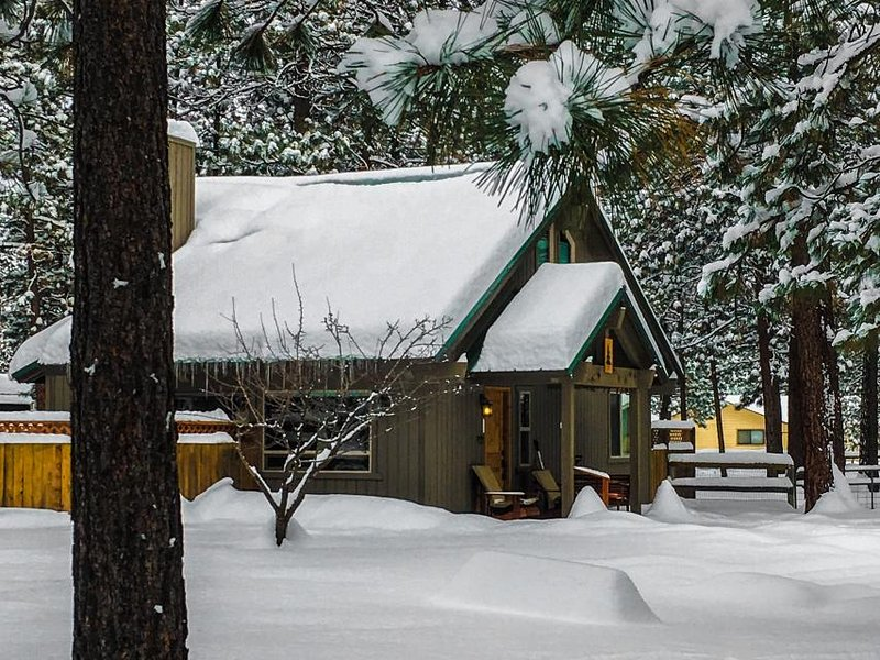 Cute cabin with wonderful community amenities - including a shared pool! - Image 1 - Sisters - rentals
