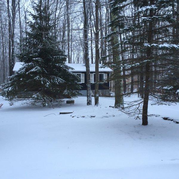 Tranquility Cottage at Arrowhead Lake! Fplc, Fpit - Image 1 - Pocono Lake - rentals