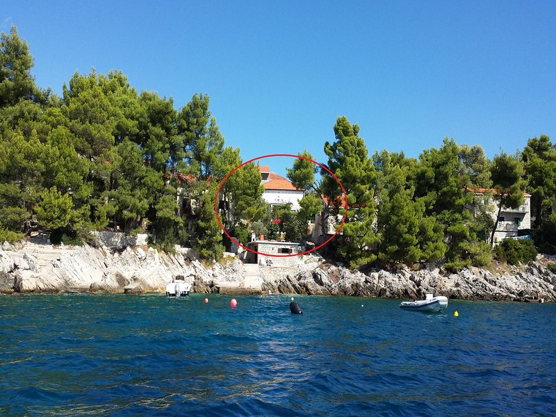 house - Villa Antea H(8+1) - Brna - Brna - rentals
