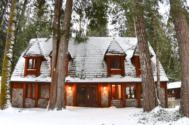 Alpine Chalet in a Winter Wonderland - Alpine Chalet  w/ Private Hot Tub - Rhododendron - rentals