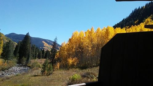 fall color at its finest - Vail  Secluded Cabin, one of a kind views! - Vail - rentals
