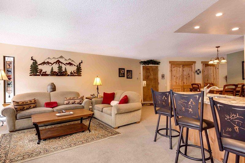 1 Bedroom, 2 Bathroom House in Breckenridge  (07C1) - Image 1 - Breckenridge - rentals