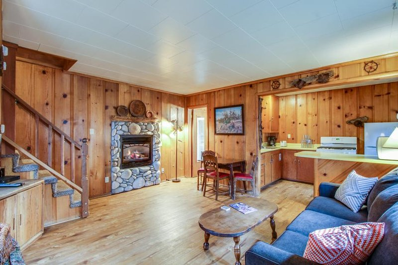 Dog-friendly cabin w/ hot tub, gas fireplace, and trail access - Image 1 - South Lake Tahoe - rentals