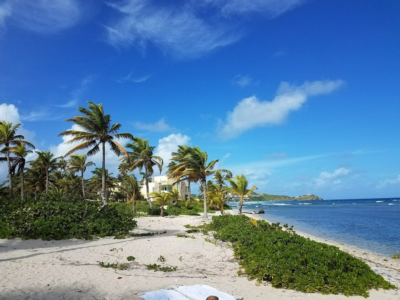 Relax and snorkel just steps away at Pelican Cove beach. - Dolphin's Paradise at Pelican Cove - Christiansted - rentals