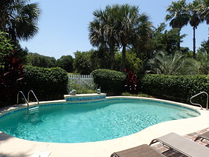 A tropical paradise in your back yard! - New Luxury Vacation Home - Private Pool, Golf Cart - Isle of Palms - rentals