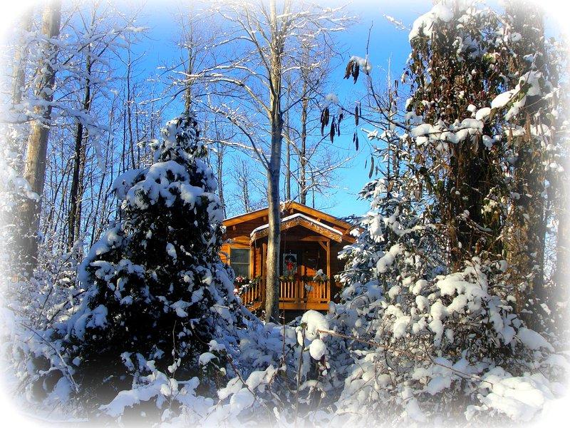 Romantic getaway - Image 1 - Hillsboro - rentals