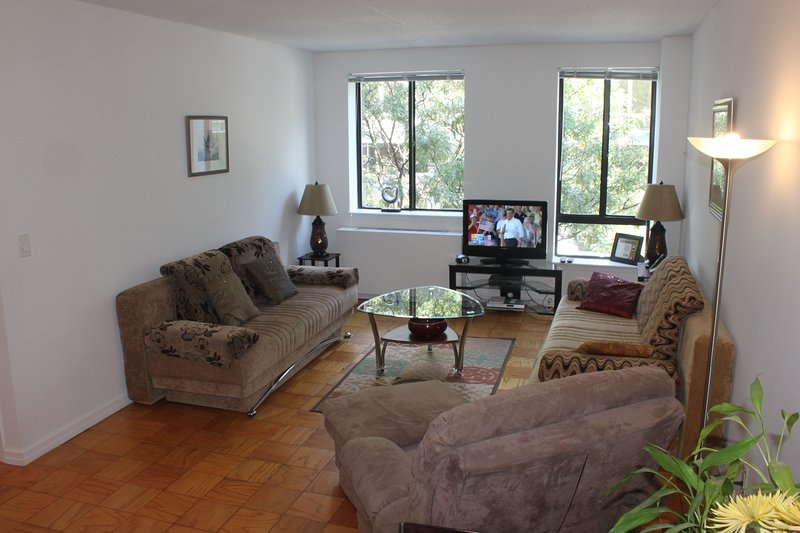 Spacious living room with flat screen TV - Luxury,spacious Broadwy/TimesSq(Sleeps 7) Promo: May 18;  Jun 3; 17-19; 24-27 - Manhattan - rentals