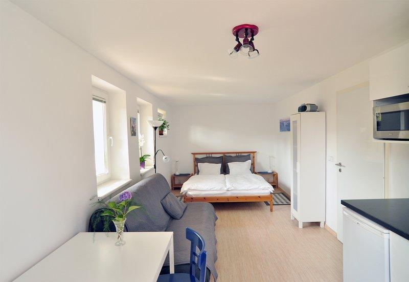 Apartment Red Tree - Vrchlabi - Ski & Hiking Base - Image 1 - Vrchlabi - rentals