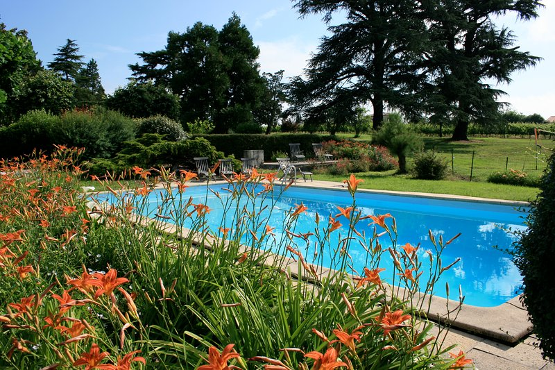secured shared swimming pool 12 x 6M secured  - Holiday houses on a Bordeaux family winery - Saint-Caprais-De-Bordeaux - rentals