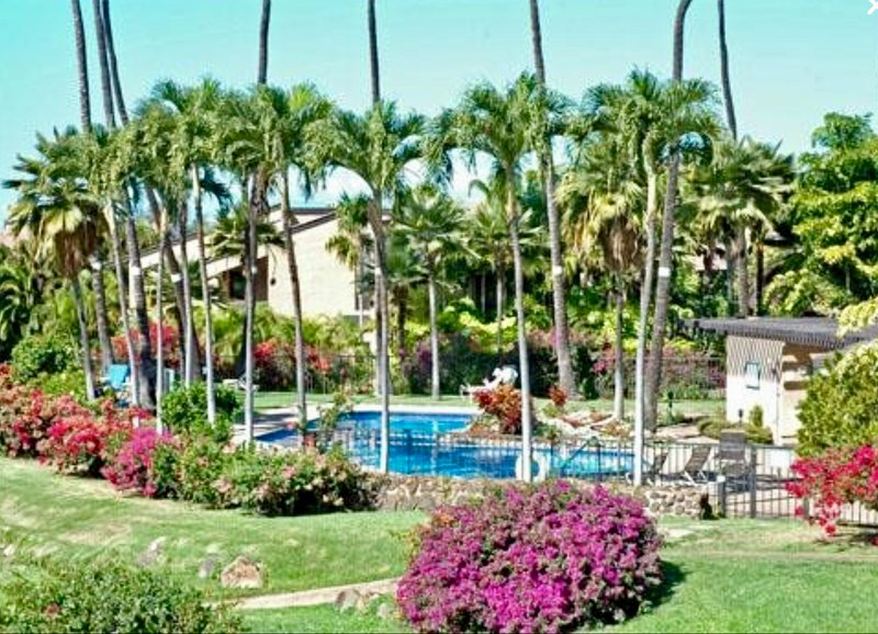 View from our terrace - Wailea Ekahi, Privacy and Luxury - $149 - $265/nt       May/July Special $129/nt - Wailea - rentals
