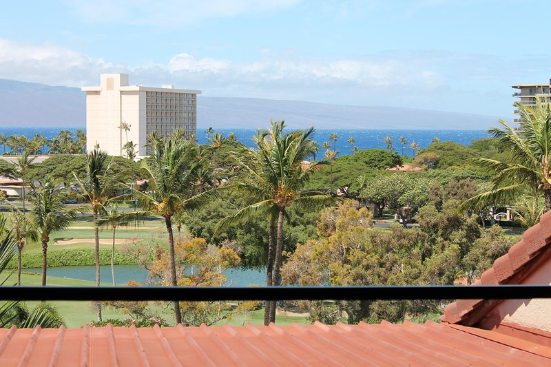 Ocean Views      Sunsets     Relax - Image 1 - Lahaina - rentals