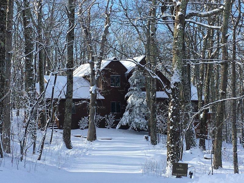 WINTERGREEN MOUNTAIN HOUSE - Image 1 - Nellysford - rentals