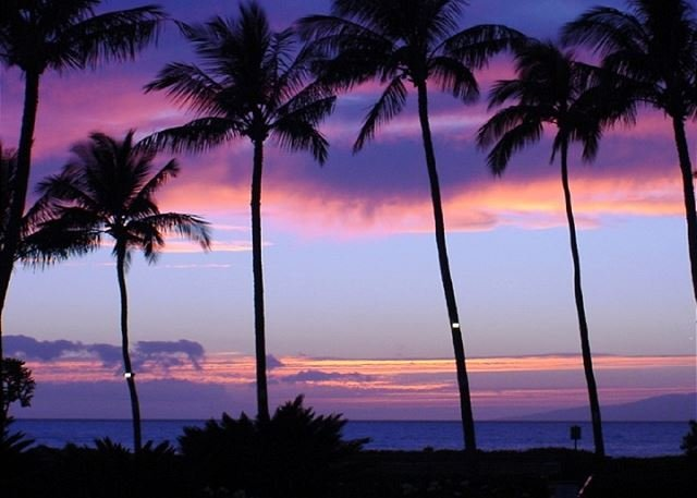 Sunset from Leinaala - Stop! Look No Further! Leinaala #104 Oceanfront Ocean View 1Bd/1Ba Sleeps 4 - Kihei - rentals