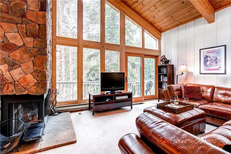 Tannenbaum by the River 301 by Ski Country Resorts - Image 1 - Breckenridge - rentals