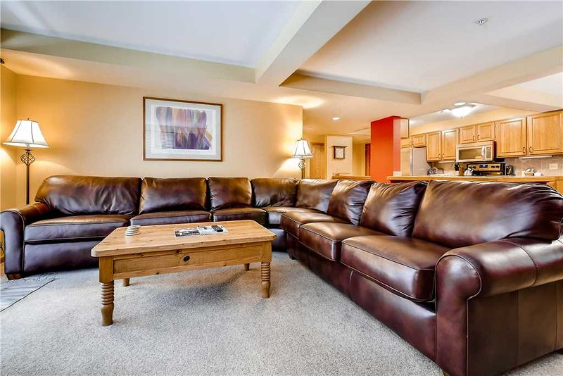 Torian Plaza 401 - Image 1 - Steamboat Springs - rentals