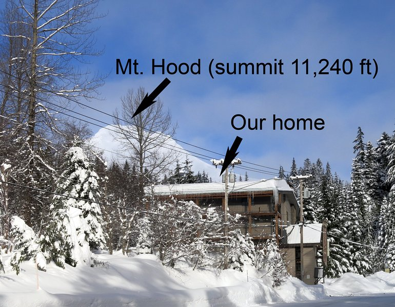 Mt. Hood's summit is perched just above our mountain get-away!  - Mt Hood Studio Condo with Best Views of Ski Resort - Ski Free Offer Available - Government Camp - rentals
