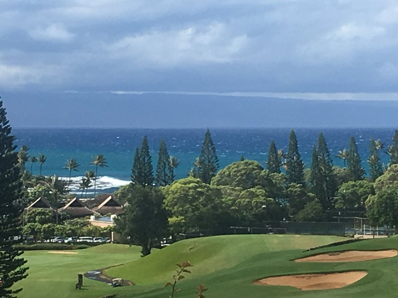 View From Lanai - The most Gorgeous 2bd2ba OV Villa  in Kapalua! - Kapalua - rentals