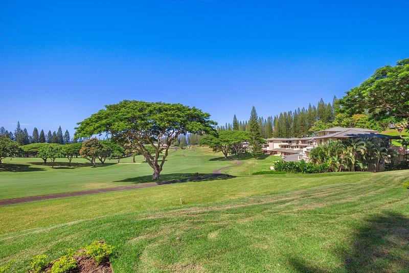 VIew from Lanai - Stunning Villa in Paradise!! - Kapalua - rentals