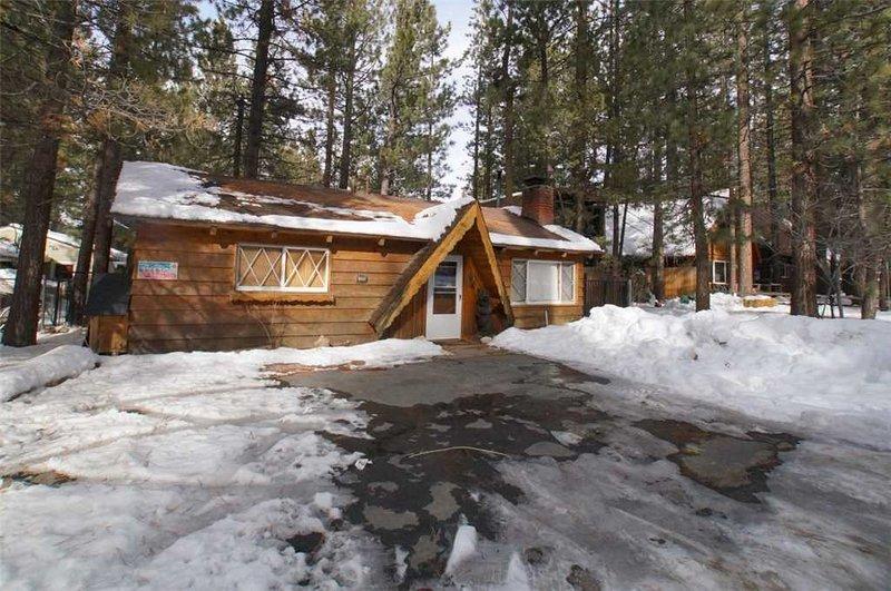 1 Classic Cabin - Image 1 - City of Big Bear Lake - rentals