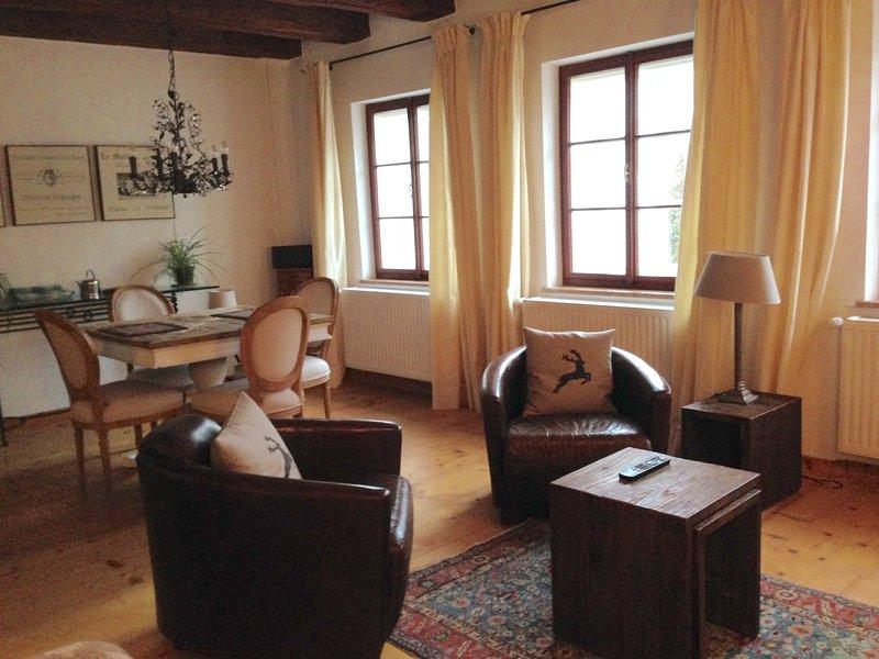 (2) Stylish apartment, historic centre, quiet - Image 1 - Salzburg - rentals