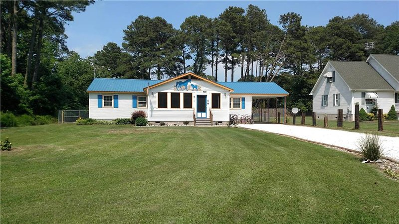 Horseshoe Haven - Image 1 - Chincoteague Island - rentals