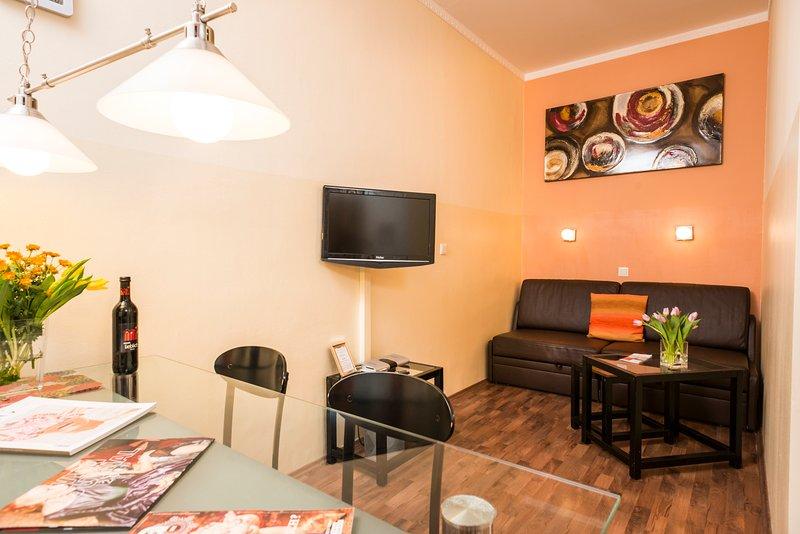 Stylish  flat Ap8 - Image 1 - Vienna - rentals