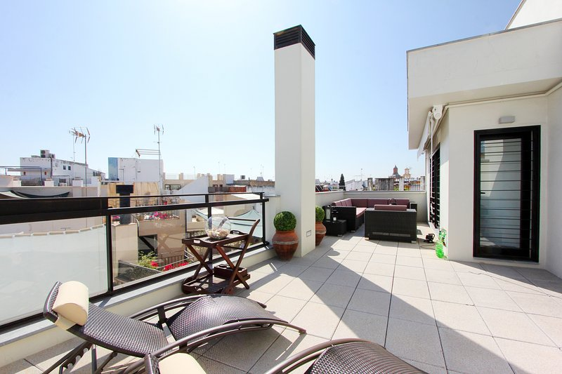 Apartment with a large private terrace. - Corral del Rey Terrace 1. Giralda and Cathedral views - Seville - rentals