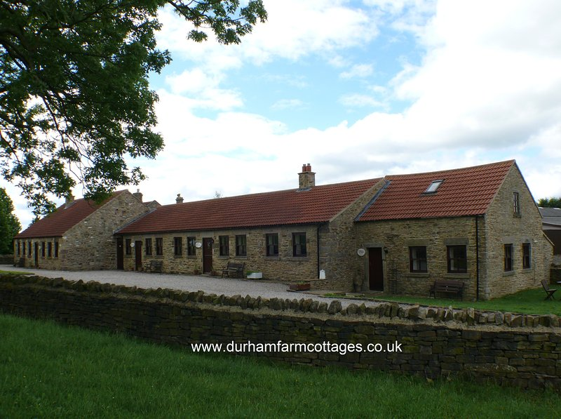 Holiday cottages Durham - Stowhouse Farm Cottages Durham - Bluebell Cottage - Durham - rentals