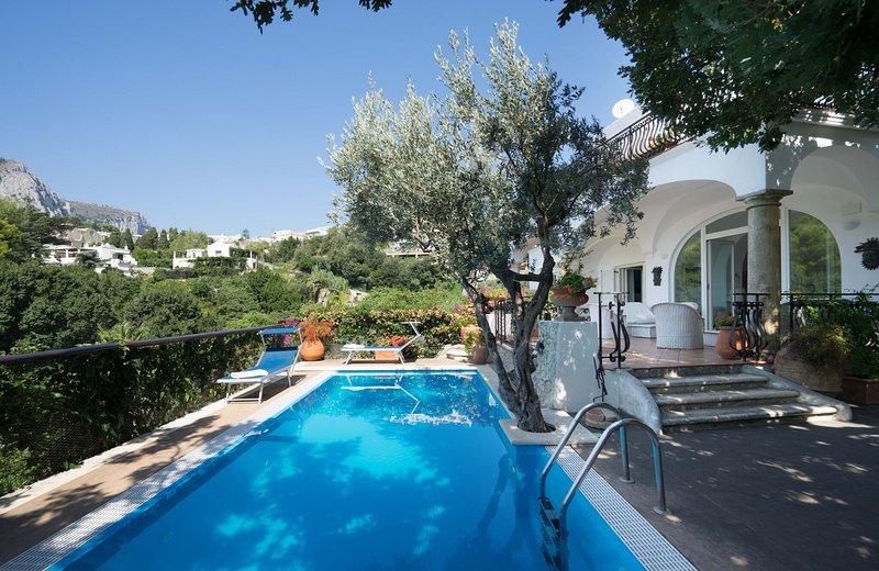 Villa Marinella - Image 1 - Ischia Porto - rentals