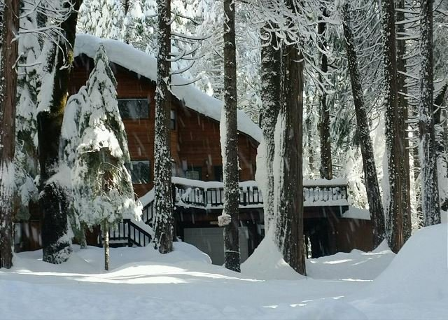 Come Rest Awhile...in the snow - Enjoy this Dorrington Mountain Cabin!  Everything you need, a perfect escape! - Dorrington - rentals