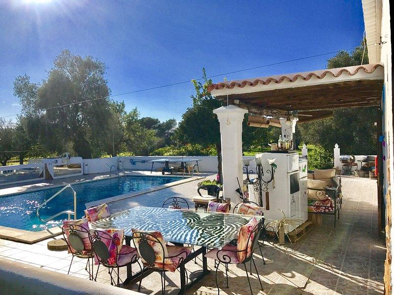 House Villa in Ibiza / 5 DOUBLE bedrooms big pool - Image 1 - Es Codolar - rentals