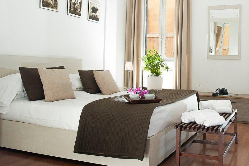 Babuino Deluxe - Piazza di Spagna - Rome - Image 1 - Rome - rentals