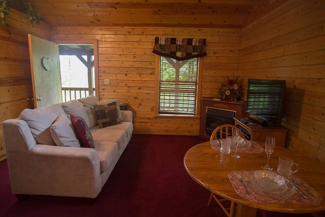 Living room w/gas fireplace and flat screen TV - Enchanted Forest: Deluxe Mountain Top Cabin 3 - Eureka Springs - rentals
