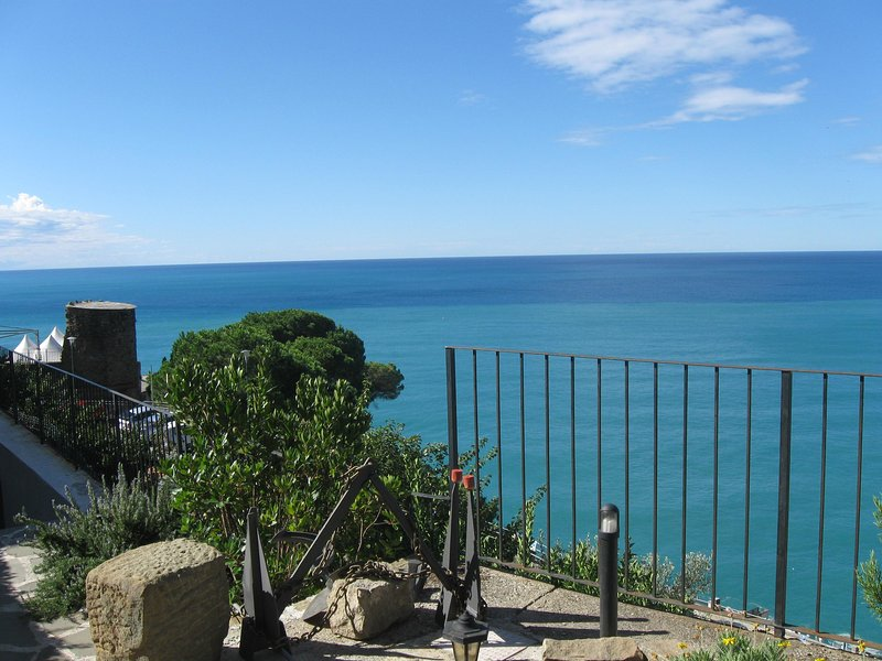 Cinque Terre Villa - Image 1 - Riomaggiore - rentals