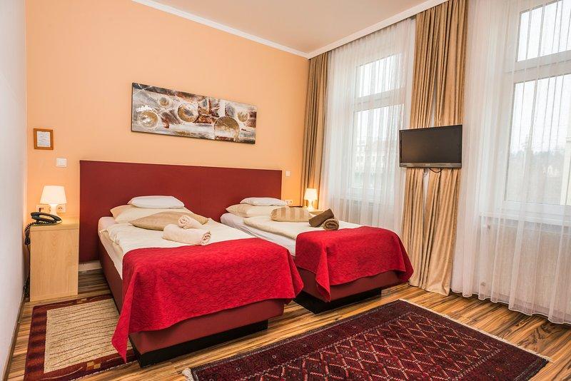 Homely flat Ap7 - Image 1 - Vienna - rentals