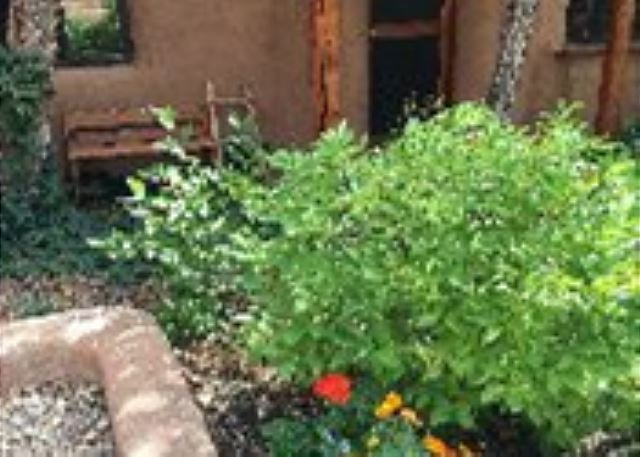 Outdoor respite showing spring blooms - La Casita  Upscale Southwest Charm Walk to Plaza - Taos - rentals