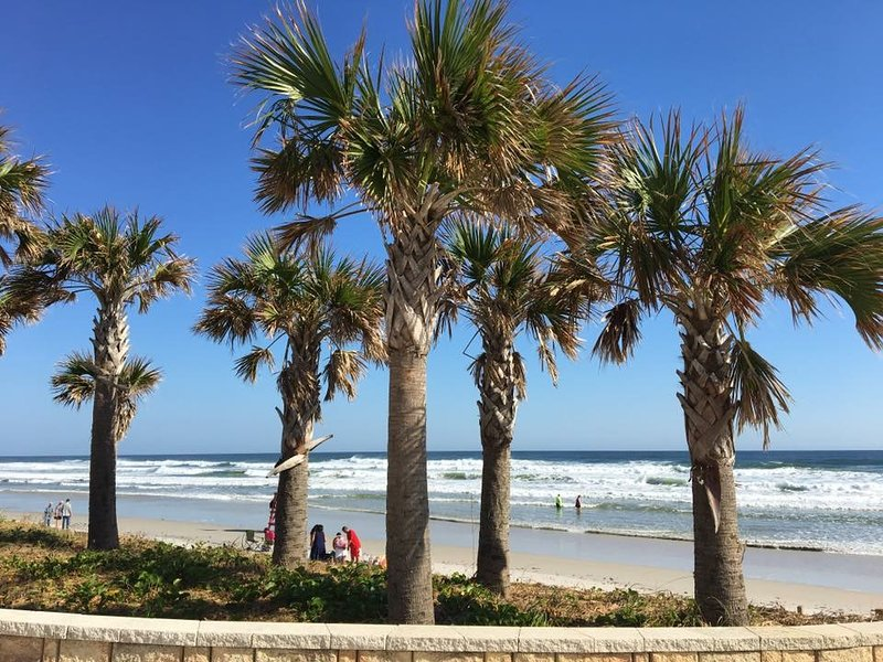 Daytona Beach - the World's Most Famous Beach - TWO HOMES UNDER ONE ROOF - 4 BR 2 BA - Daytona Beach - rentals