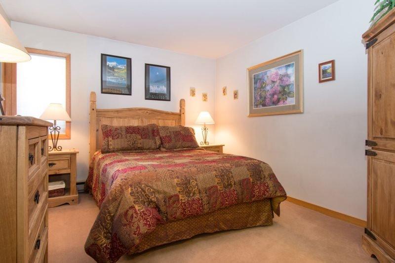 Ski Run Condominiums 203 - Walk to slopes, ski area views, spacious - Image 1 - Keystone - rentals