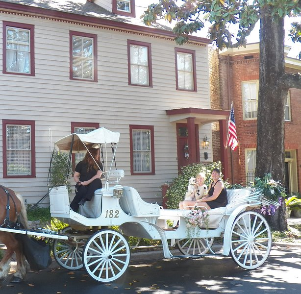 Gorgeous Historic Manor-heart of downtown-walk it! - Image 1 - Savannah - rentals