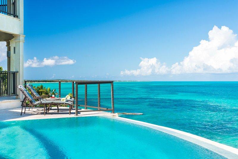 Luxury on a grand scale Beach Villa Palmera - Image 1 - Providenciales - rentals
