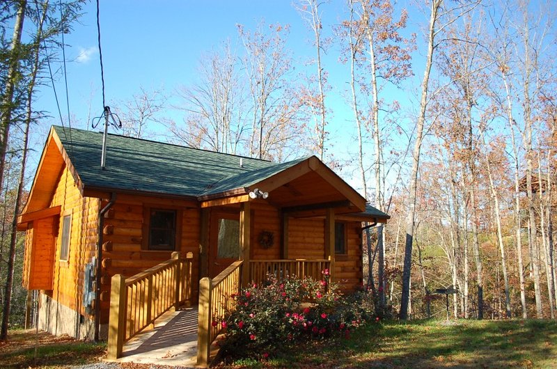 Simply Irresistible - Image 1 - Sevierville - rentals