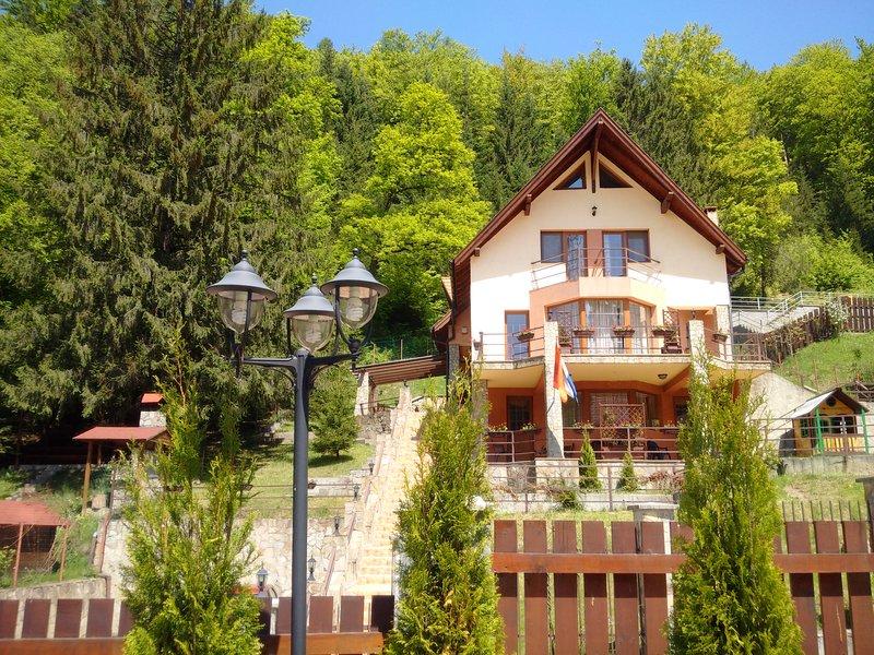 Villa Casa 0landeza rental chalet Transylvania - Image 1 - Brasov - rentals
