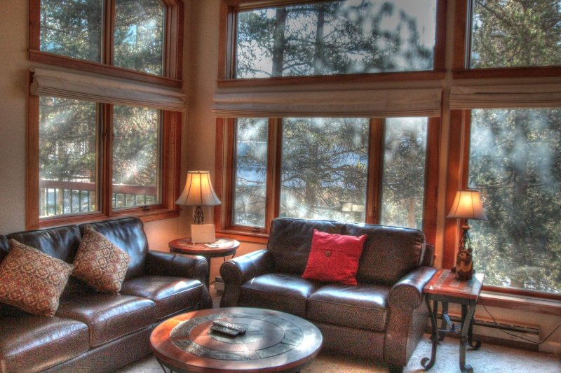 """SkyRun Property - """"1634 Quicksilver"""" - Living room - 1634 Quicksilver - Dillon - rentals"""