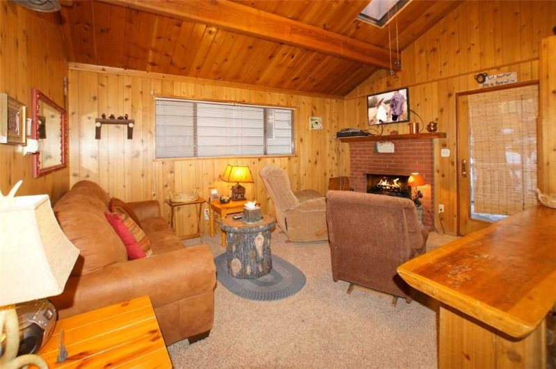 Bearadise - Image 1 - Big Bear Lake - rentals